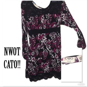 ‼️🔥NWOT CATO Floral Blouse!🔥‼️